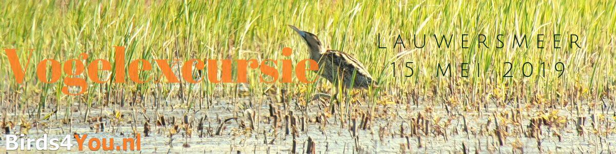 Vogelexcursie Lauwersmeer 15 mei 2019
