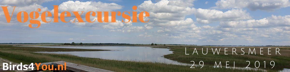 Vogelexcursie Lauwersmeer 29 mei 2019
