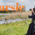 Verslag Privé Vogelexcursie Lauwersmeer 4 mei 2019