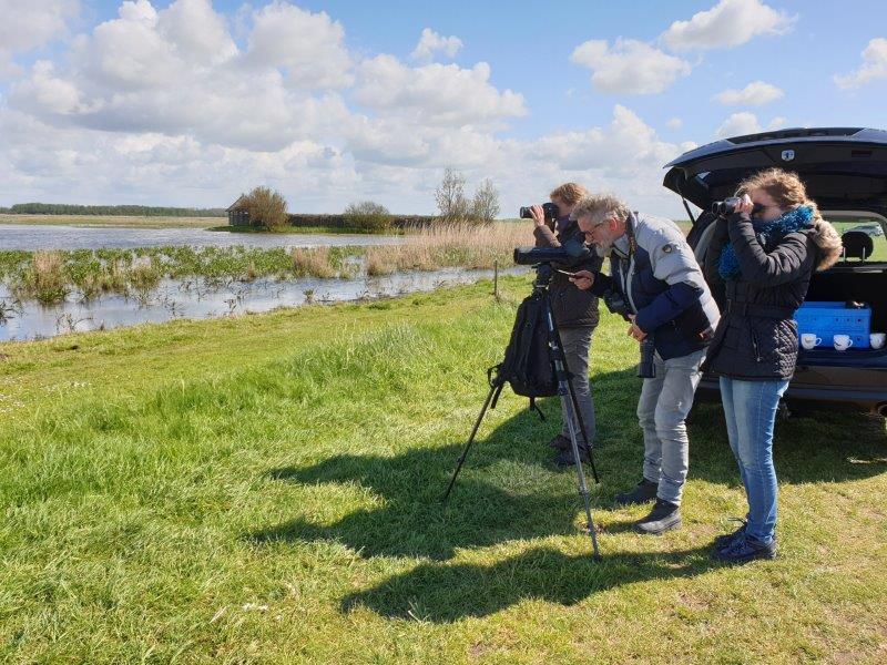 Vogelexcursie Lauwersmeer Koffiepauze
