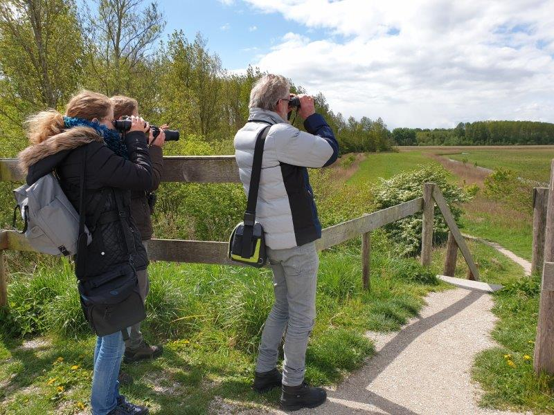 Vogelexcursie Lauwersmeer deelnemers op uitkijkheuvel