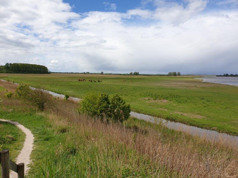 Vogelexcursie Lauwersmeer uitzicht vanaf de heuvel