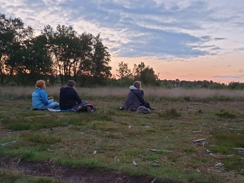 Deelnemers luisteren naar de Nachtzwaluw