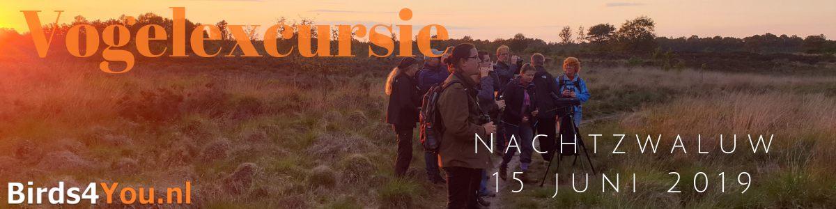 Nachtzwaluw excursie 2019
