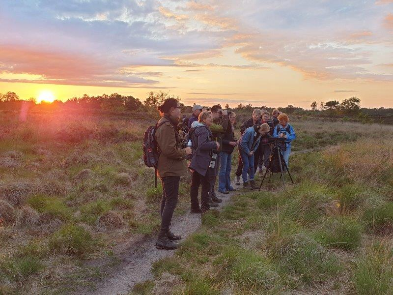 Deelnemers kijken naar de Koekoek
