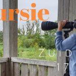 Fotoverslag Privé vogelexcursie Zuidlaardermeer 17 juli 2019