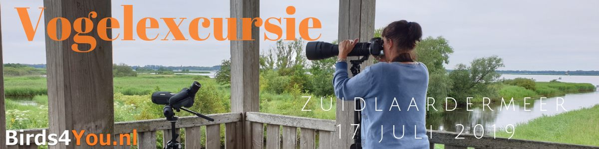 Vogelexcursie Zuidlaardermeer 17 juli 2019