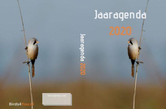Jaaragenda 2020 Hardcover A5 Staand