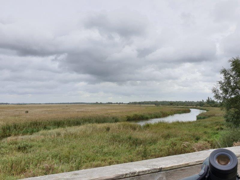 Uitzicht Kollumerpomp