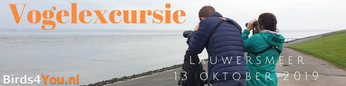 vogelexcursie Lauwersmeer 13 oktober 2019
