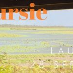 Verslag privé vogelexcursie Lauwersmeer 28 september 2019