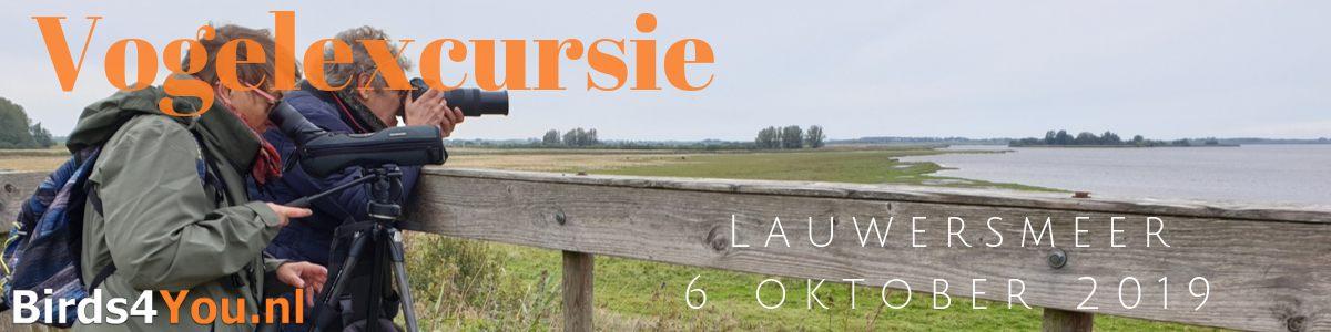 vogelexcursie Lauwersmeer 6 oktober 2019