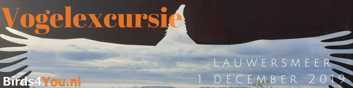 Vogelexcursie Lauwersmeer 1 december 2019