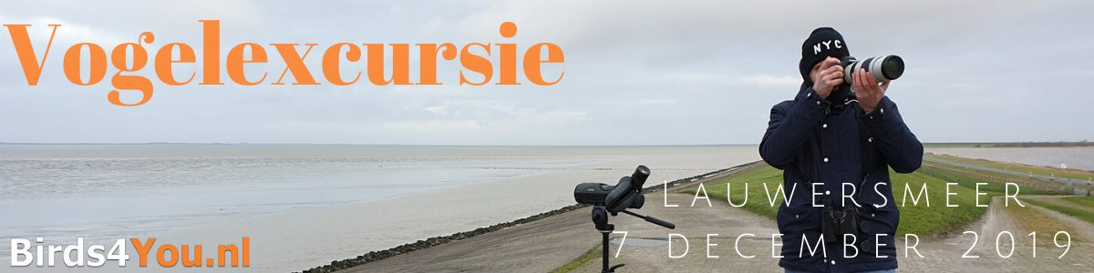 Vogelexcursie Lauwersmeer 7 december 2019