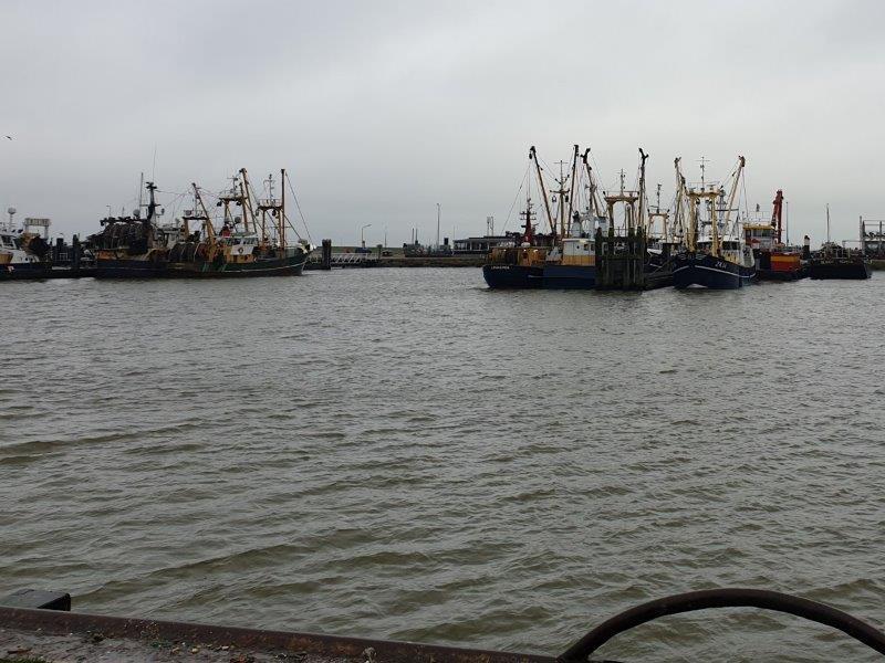 Haven Lauwersoog