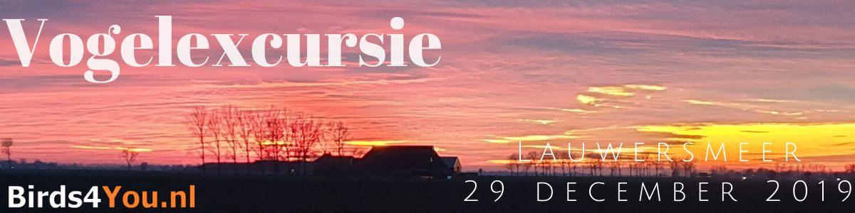 Vogelexcursie Lauwersmeer 29 december 2019