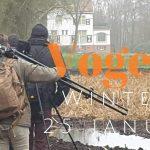 Verslag groeps vogelexcursie Wintergasten op 25 januari 2020