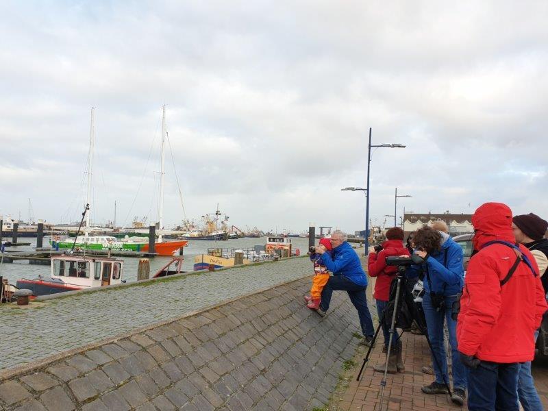 Deelnemers in de haven van Lauwersoog