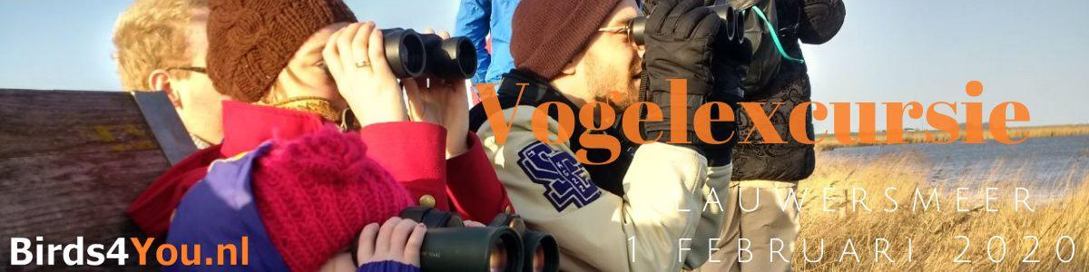 Vogelexcursie Lauwersmeer 1 februari 2020