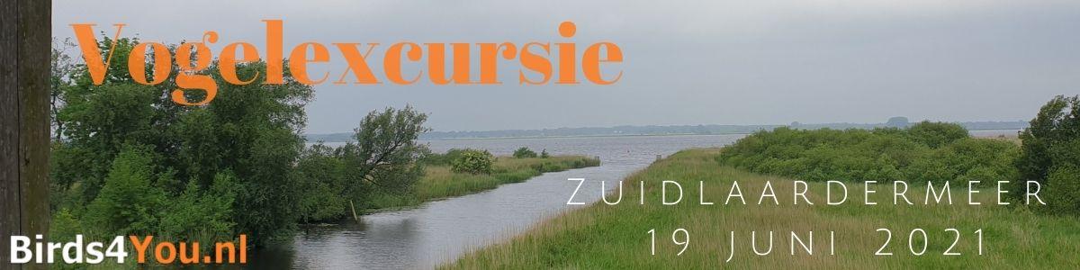 Vogelexcursie Zuidlaardermeer 19 juni 2021