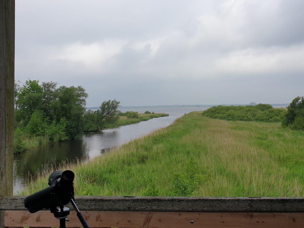 Vogelexcursie Zuidlaardermeer Blik op Zuidlaardermeer