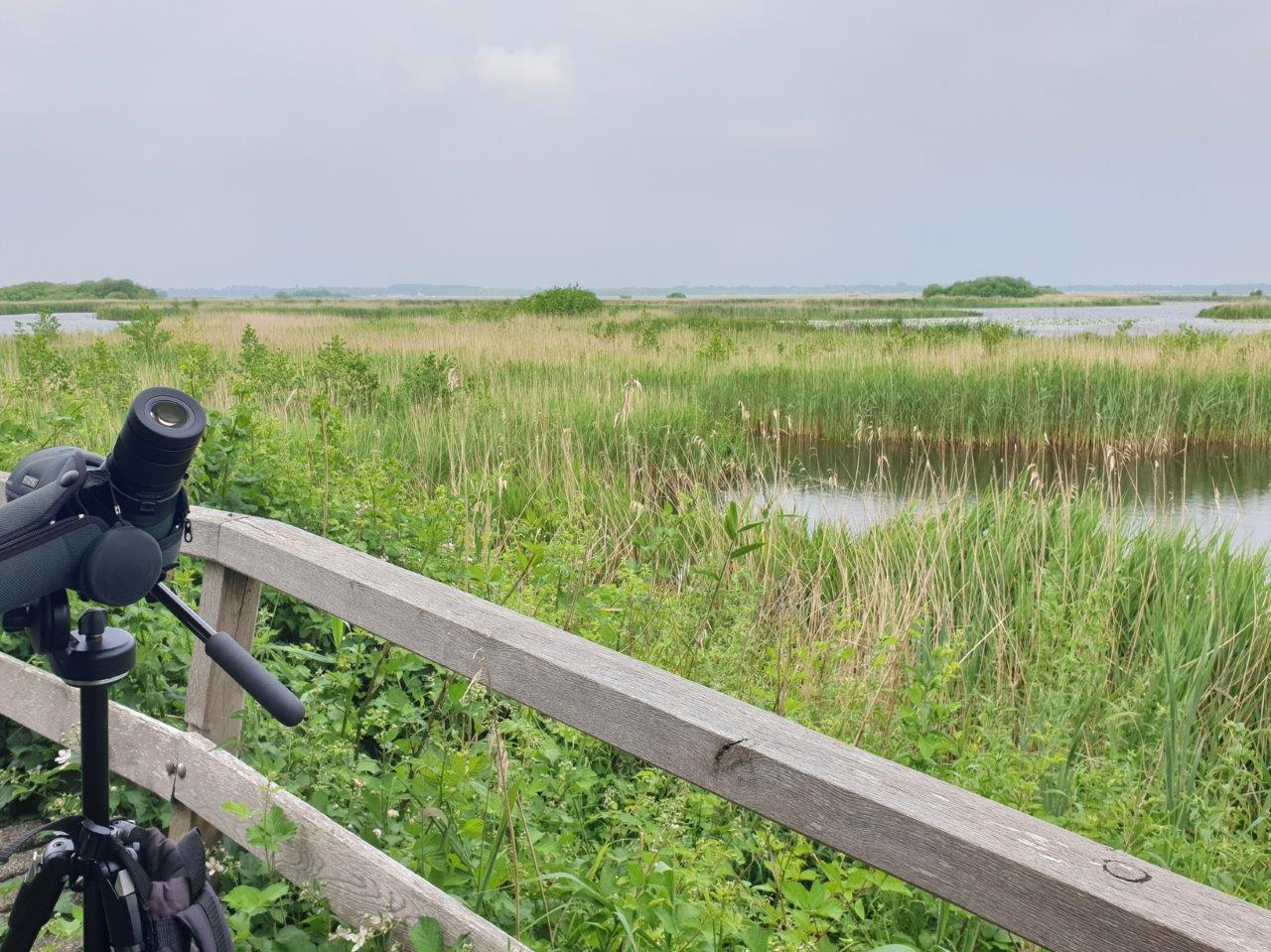 Vogelexcursie Zuidlaardermeer Uitzicht vanaf het bruggetje