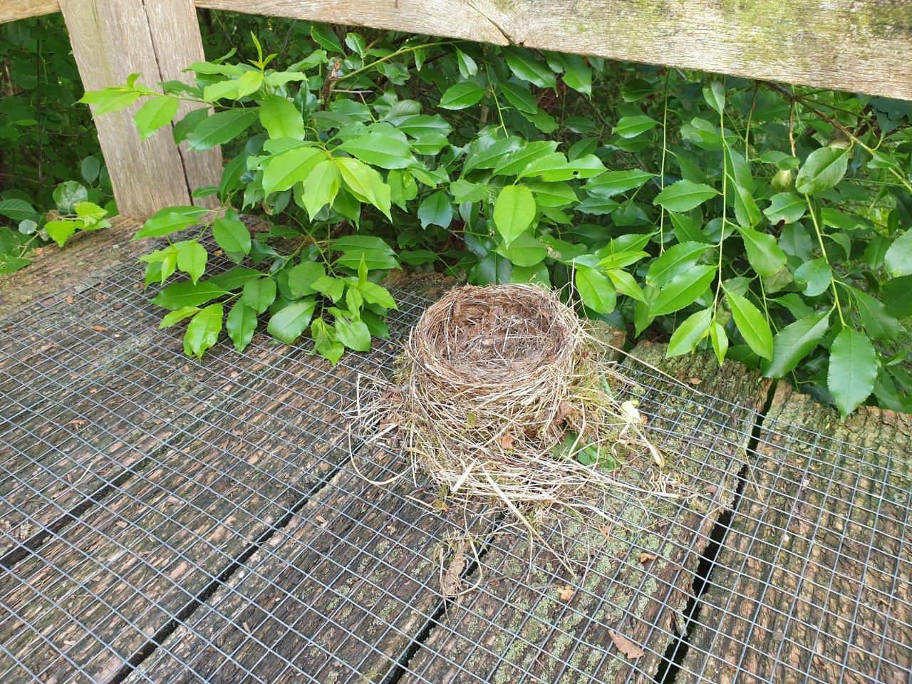 Mysterieus nestje