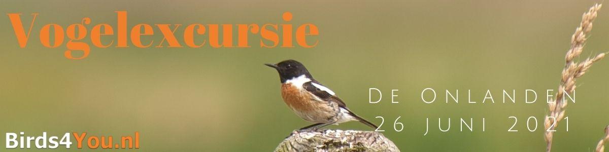 Vogelexcursie De Onlanden 26 juni 2021