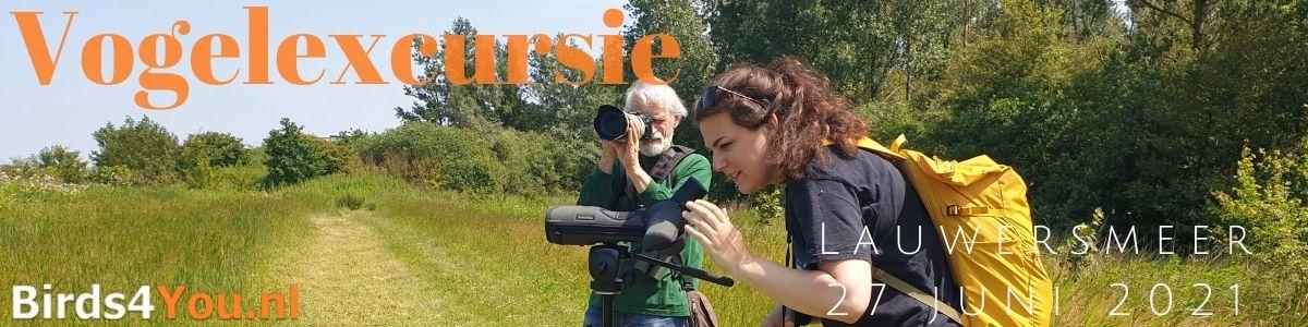 Vogelexcursie Lauwersmeer 27 juni 2021