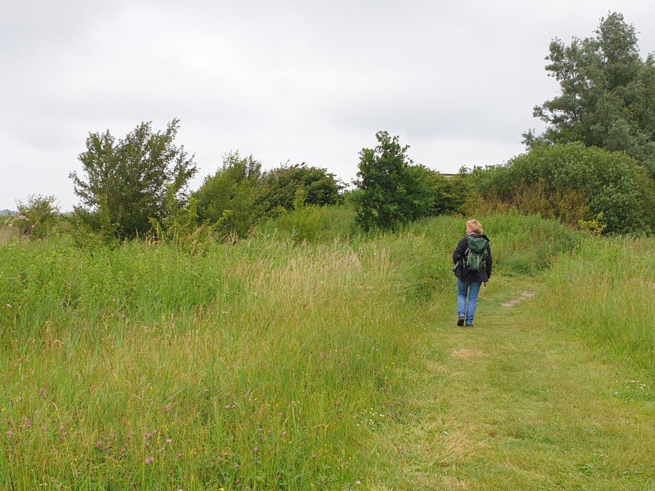 Op weg naar de uitkijkheuvel