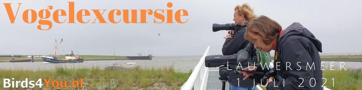 Vogelexcursie Lauwersmeer 1 juli 2021