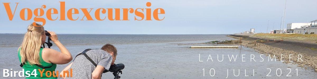 Vogelexcursie Lauwersmeer 10 juli 2021
