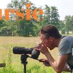 Verslag Privé vogelexcursie Drentsche Aa 11-7-21