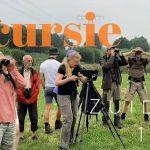 Verslag Privé vogelexcursie Zuidlaardermeer 13-7-21