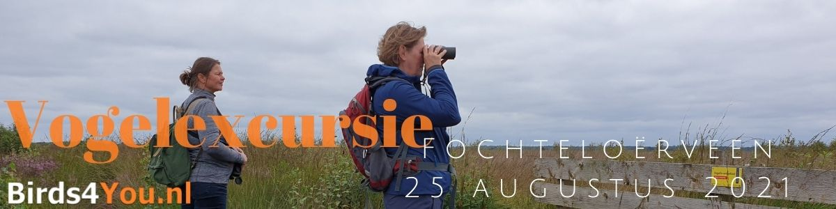 Vogelexcursie Fochteloërveen 25 augustus 2021