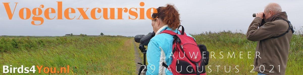Vogelexcursie Lauwersmeer 29 augustus 2021
