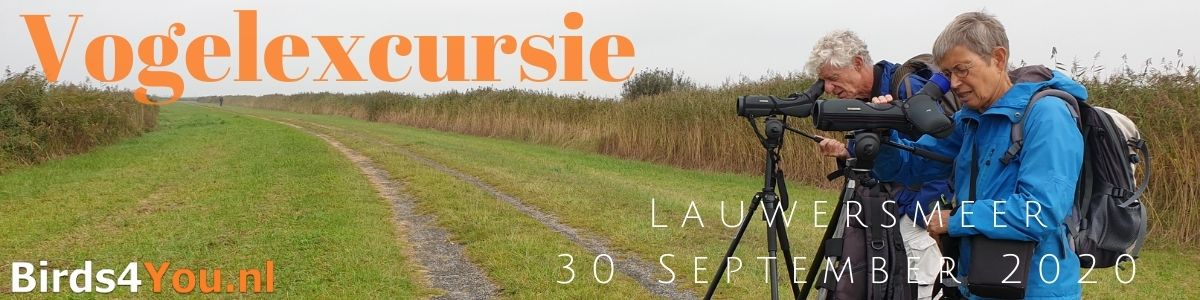 Vogelexcursie Lauwersmeer 30 September 2020