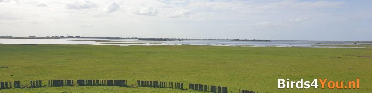 Activiteiten Lauwersmeer