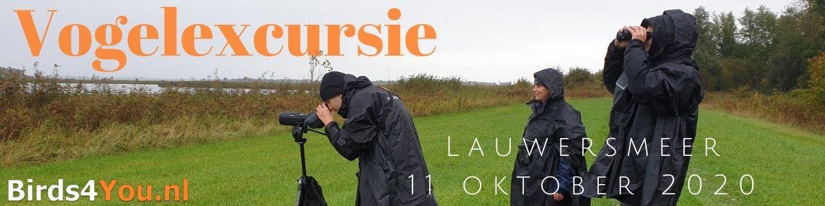 Vogelexcursie Lauwersmeer 11 oktober 2020