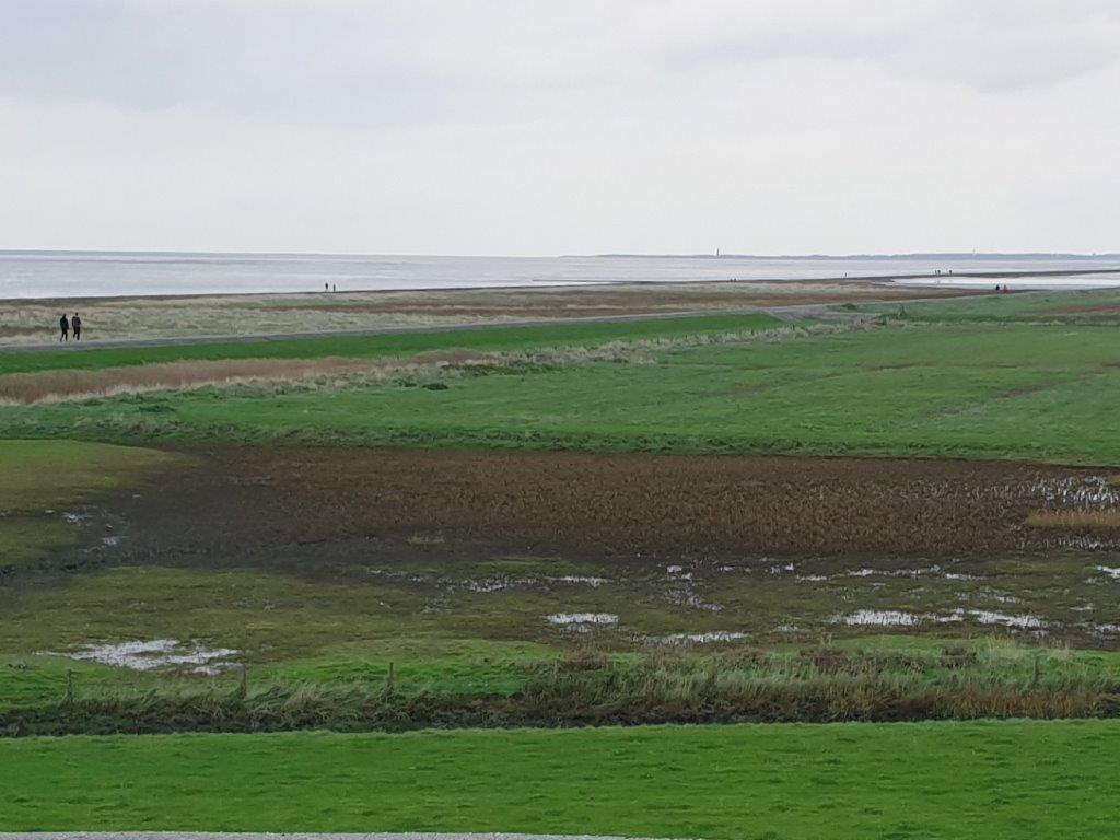 Friesland buitendijks