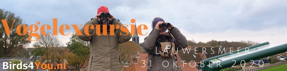 Vogelexcursie Lauwersmeer 31 oktober 2020