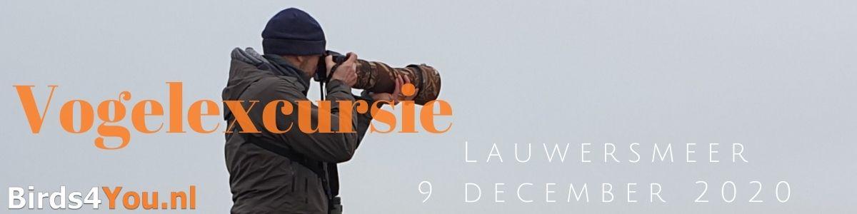 Vogelexcursie Lauwersmeer 9 december 2020