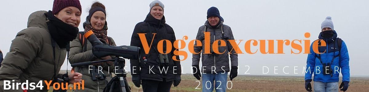 Groeps Vogelexcursie Friese Kwelders 12 december 2020