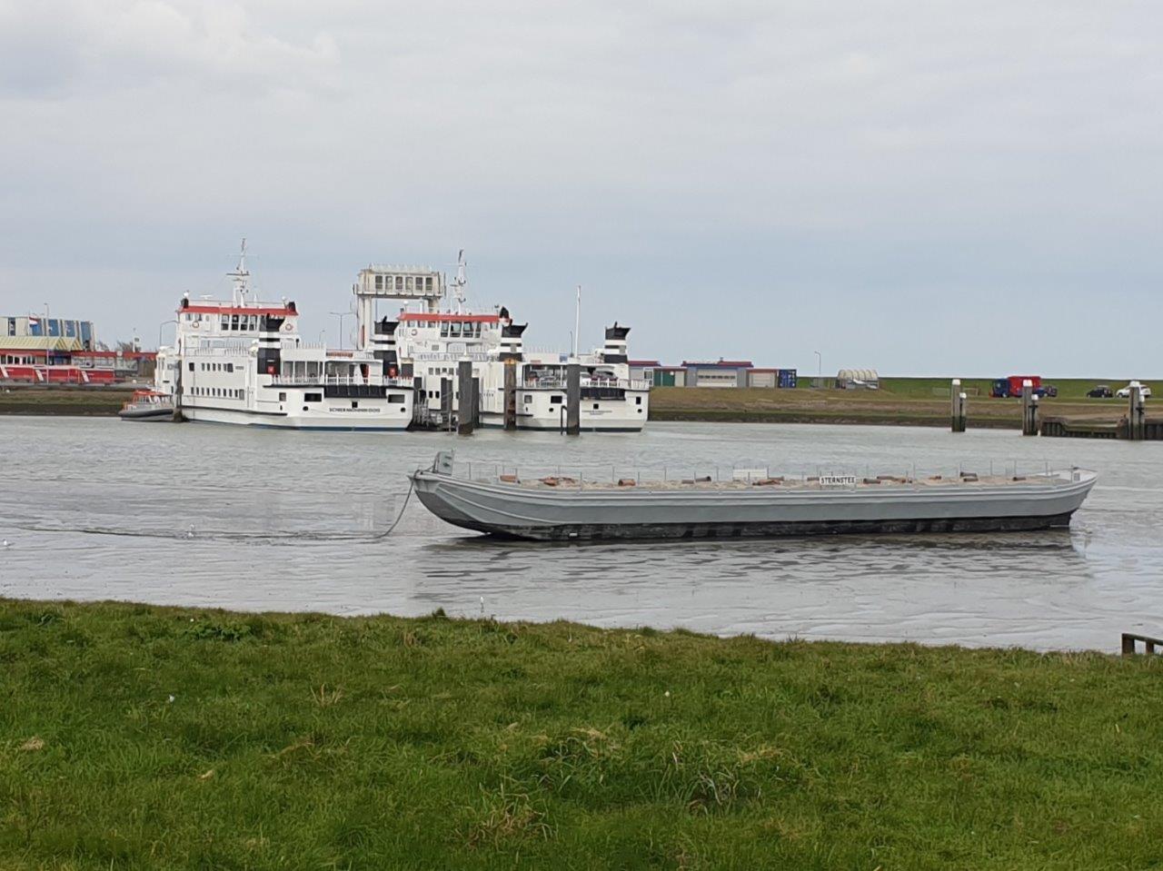 Vogelexcursie Lauwersmeer De Sternstee