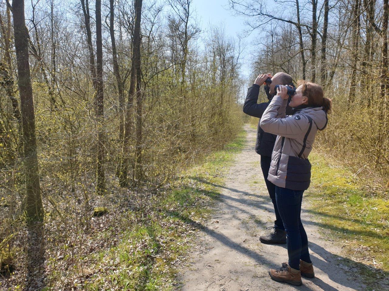 Vogelexcursie Deelnemers genieten van Zanglijster