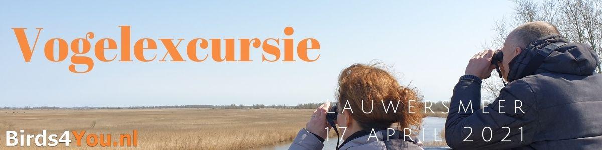 Vogelexcursie Lauwersmeer 17 april 2021