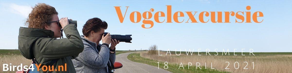 Vogelexcursie Lauwersmeer 18 april 2021