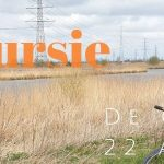 Verslag Privé vogelexcursie Onlanden op de fiets 22-4-21