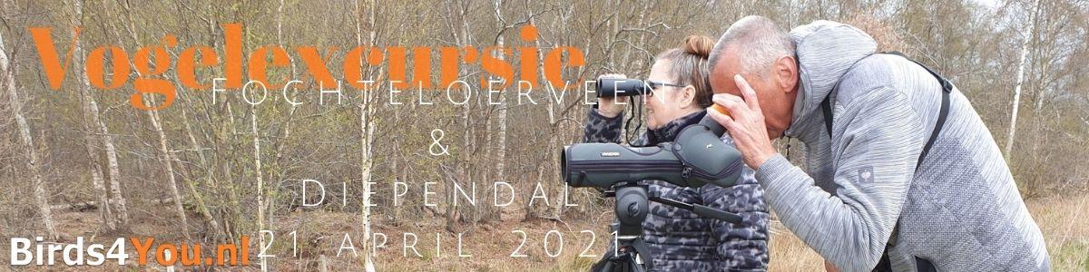 Vogelexcursie Fochteloerveen & Diependal 21 april 2021