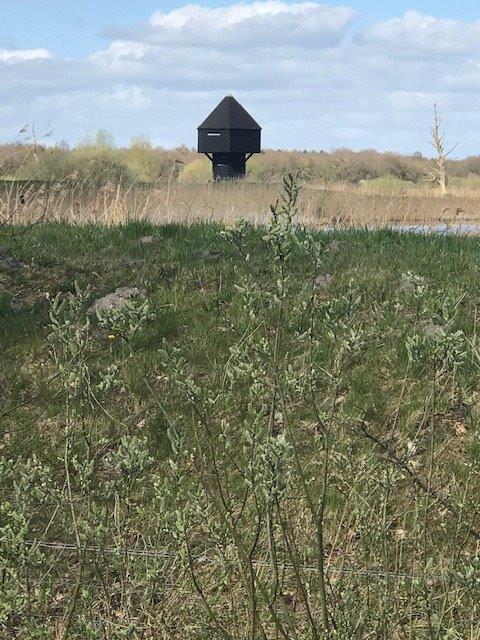 Vogelkijkhut Diependal (foto door Lia)